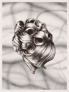 Hairdo - Jim Shaw